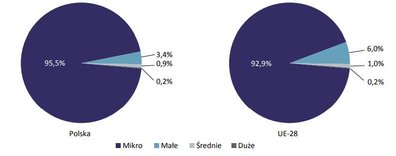 struktura przedsiębiorstw w Polsce i UE